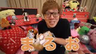 ヒカキンの猫の名前を見事当てる加藤純一。