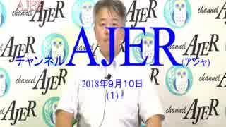 『入国在留管理庁設立への動きと実態①』坂東忠信 AJER2018.9.10(1)