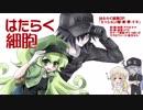 【ナナ・VY2・がくぽ・そら】はたらく細胞 OP「ミッション!健・康・第・イチ」【TVsizeカバー】