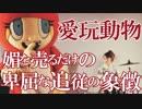 愛玩動物 あべりょう Spotifyはコレ→goo.gl/Nad2Tg
