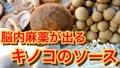 無料枠:万能調味料キノコのデュクセルの作り方