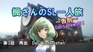 楓さんのSL一人旅~告別~Das Lebewohl !