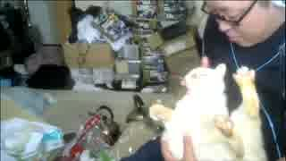 【3時】ゴミ部屋で猫を撫でまわす男