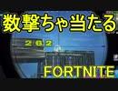 【日刊】初心者だと思ってる人のフォートナイト実況プレイPart90【Switch版Fortnite】