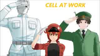 【MMDはたらく細胞】フリィダムロリィタ 1