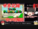 【ゆっくり解説】世界記録のマリオワール