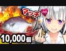 【実験】10,000個のマッチで魚焼いたら食べれるんじゃない!?