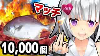 【実験】10,000個のマッチで魚焼いた