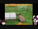 【ゆっくり+きりたん車載】中国地方5県 道の駅スタンプラリ...