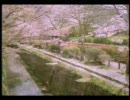 渡辺美里 - 卒業