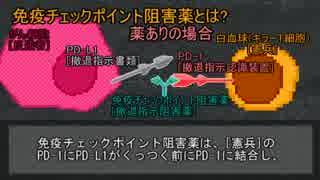 【ゆっくり解説】PD-1とチェックポイント阻害(ノーベル賞解説)