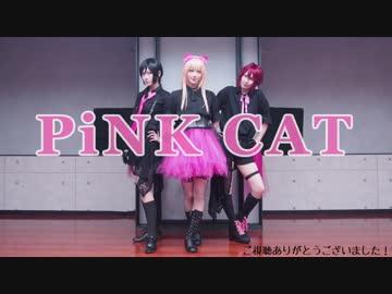 【コスプレ】PiNK CAT 踊ってみた【刀剣乱舞】
