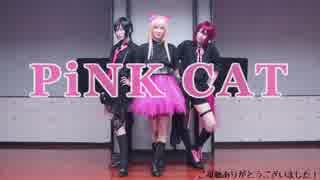 【コスプレ】PiNK CAT 踊ってみた【刀剣乱