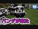 【マインクラフト】可愛いすぎる 新MOBパンダが来た アンディマイクラ (Minecrtaft...