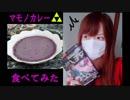 ゲーム実況者が謎料理づくり ~ マモノカレー編 ~【ハイラルライフスタイル2】