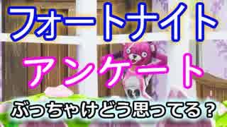 【フォートナイトバトルロイヤル】アンケ