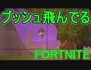 【日刊】初心者だと思ってる人のフォートナイト実況プレイPart110【Switch版Fortni...