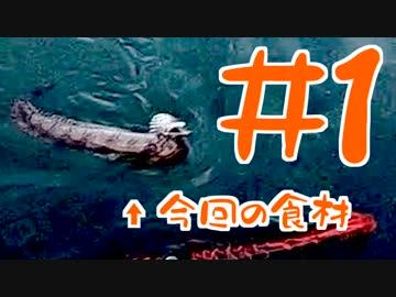 【釣り】トラウツボって食べれるんですか #1【料理】