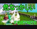 【日刊】初心者だと思ってる人のフォートナイト実況プレイPart114【Switch版Fortni...