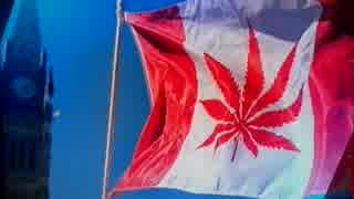 カナダが趣向品の大麻を合法化メイプルの国からマリファナの国へw