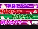 【第3回セヤ祭り】セヤナーパーティー