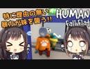 #2【Human: Fall Flat】東城姉妹の大冒険【パズルゲーム実況】