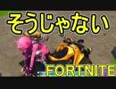 【日刊】初心者だと思ってる人のフォートナイト実況プレイPart119【Switch版Fortni...