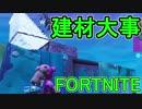 【日刊】初心者だと思ってる人のフォートナイト実況プレイPart121【Switch版Fortni...