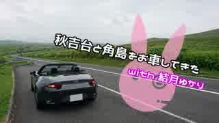 【ゆかり車載】秋吉台と角島をお車してき