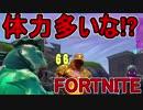 【日刊】初心者だと思ってる人のフォートナイト実況プレイPart127【Switch版Fortni...