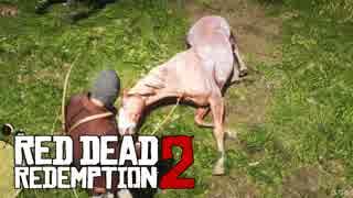 カオスな西部劇ゲーRed Dead Redemption2