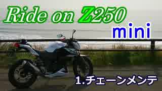 Ride on Z250 mini 【1.チェーンメンテナ