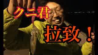 飲み会帰りにヒイカ釣ってみた!【もっち