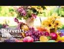 【無料フリーBGM】軽快で楽しいケルト曲「Harvest5」