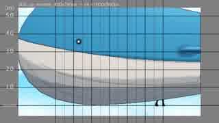 ホモと見るPKMN大きさ比較.USUM