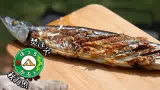 ぼっちかふぇ その132 ~焚き火で秋刀魚!