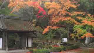 紅葉の京都(2018/11/11)