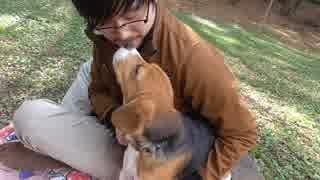 100円で犬を大喜びさせる動画