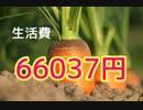 10月の生活費は66037円と安かった。君は自分の使ってるお金は把握してる?