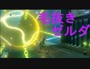 【実況】♡1失うごとに毛を1本抜くゼルダBOTW【Part4】