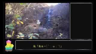 【鉱物採集】荒川鉱山攻略【RTA】