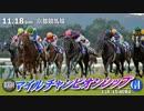 【中央競馬】プロ馬券師よっさんの第35回マイルチャンピオンシップ(GI)