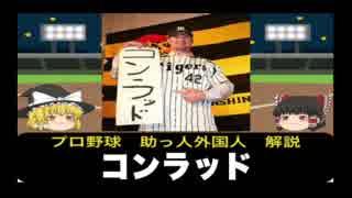 【ゆっくり助っ人解説】プロ野球外国人選