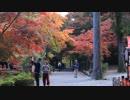 紅葉の京都(2018/11/18)
