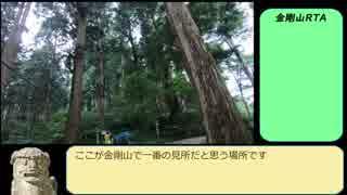 【RTA】ポケモンGO 金剛山完全攻略 02:58:07後編①