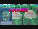 【遊戯王】新規カオスソルジャーが欲しい男のリンクヴレインズパック2【2BOX開封】