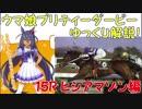 【第15R】 ウマ娘プリティーダービーに登場するキャラクターのモデルになった競走馬をゆっくり解説!ヒシアマゾン編