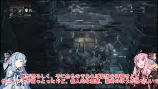 【Bloodborne】地底人目指して墓暴き Par