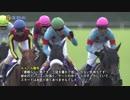 アーモンドアイ 新馬戦~ジャパンC 全レース