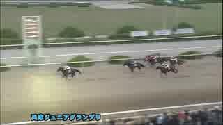 人気の「園田競馬」動画 595本 -...